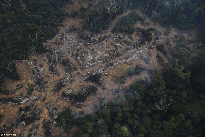 Desflorestação da Amazónia, Porto Velho, Rondónia