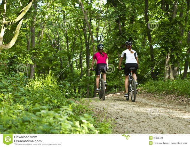 flickor-frn-bak-som-cyklar-i-skogen-31882729.jpg 1300 × 1007 pixlar