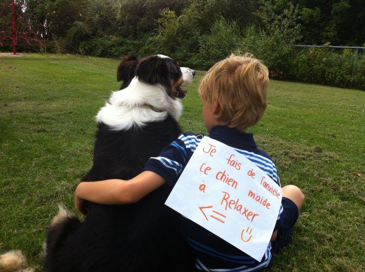 Zootherapy ❤ Dog ❤ Kid  Lili et notre métier.