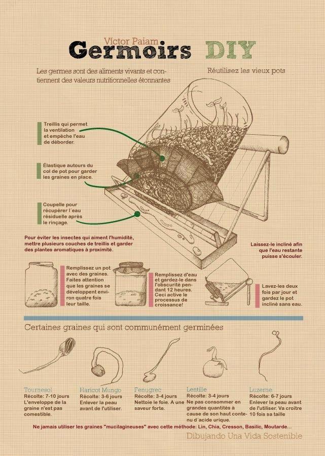 DIY-germoir-a-graines