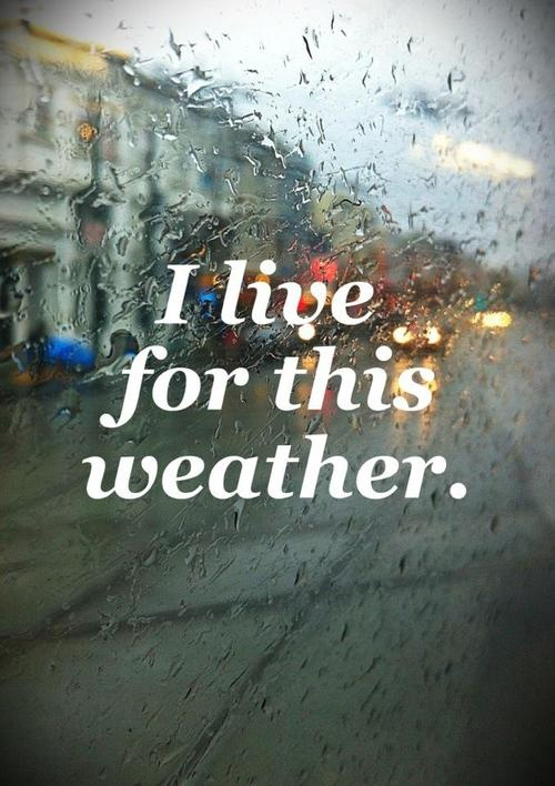 i love rain for many reasons. The air smells clean when it rains and actually allows you to notice the world thru smell. If you close your eyes you'd be amazed what your nose can see. And then rain can be a great excuse to stay in and read, light a fire or make love.