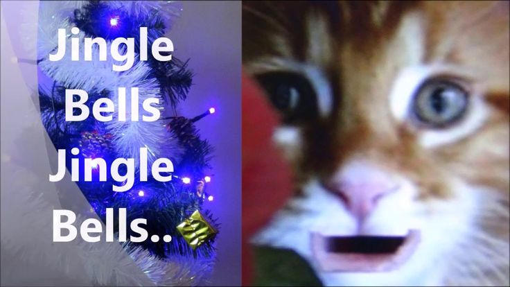 Jingle Bells from Christmas Songs for Children by Kids TVABC