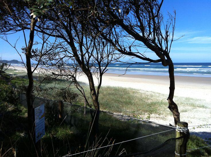 Tallows Beach Byron Bay Australia