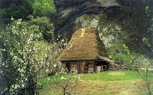 Posaga, Romania