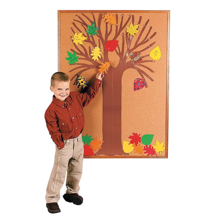 1000 images about classroom trees on pinterest for Design your own cork board