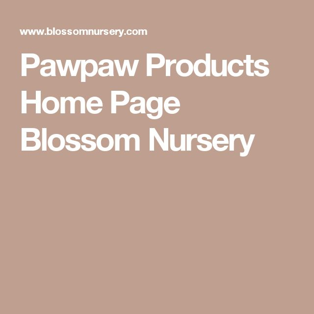 Pawpaw Products Home Page Blossom Nursery