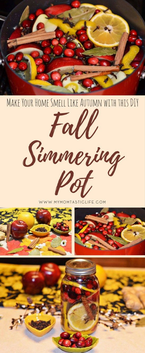 DIY Fall Simmering Pot - My Momtastic Life