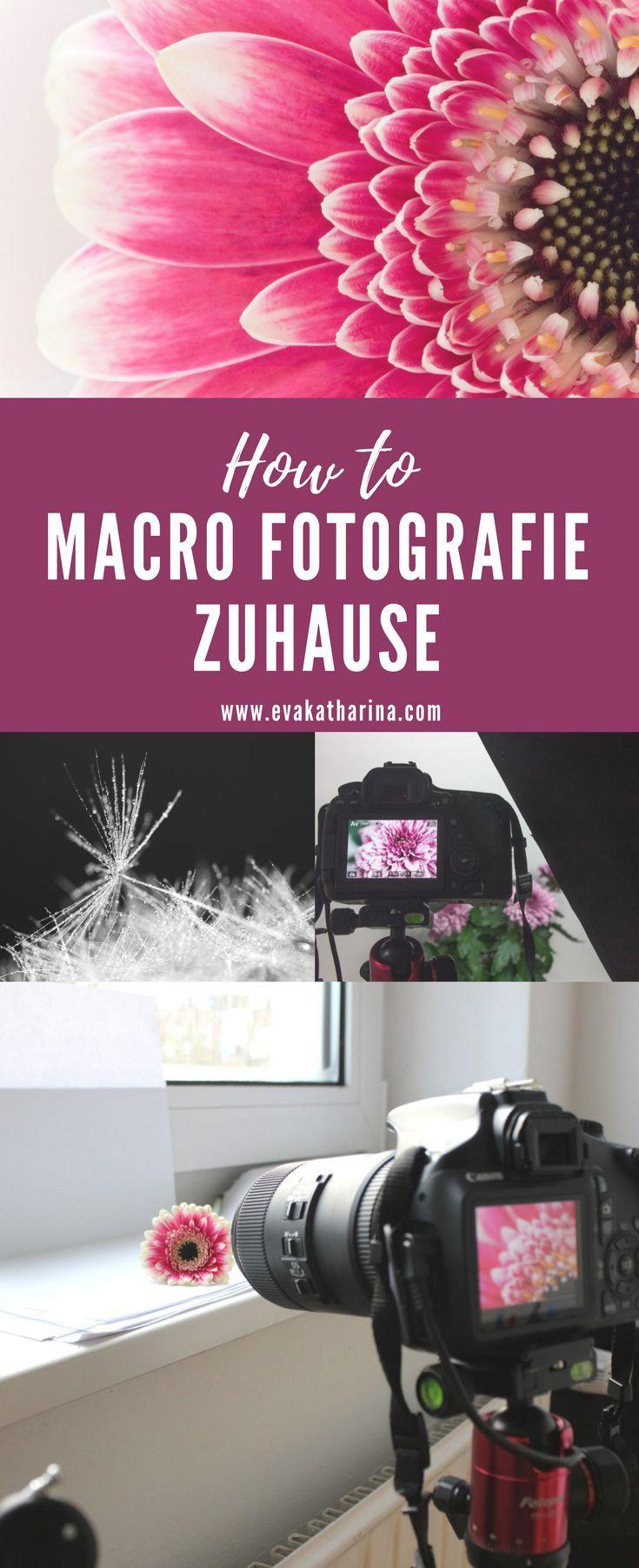 Tutorial zur Macro Fotografie im Home Studio, mit …