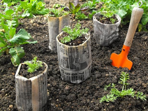 Newspaper Pots - Easy Gardening Projects and Crafts for Beginners  on HGTV