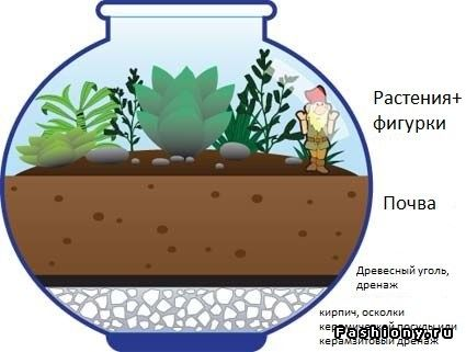 Мини-сад : флорариум