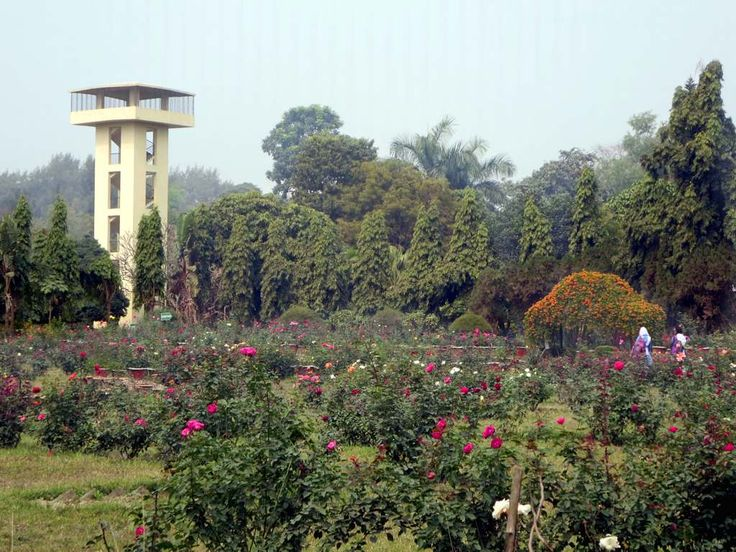 The National Botanical Gardens are next to the zoo at Mirpur in Dhaka, Bangladesh.