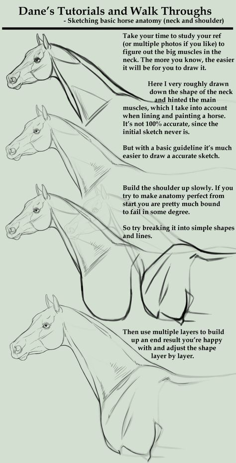 2903 best Pencils images on Pinterest | Horses, Animals and Drawings