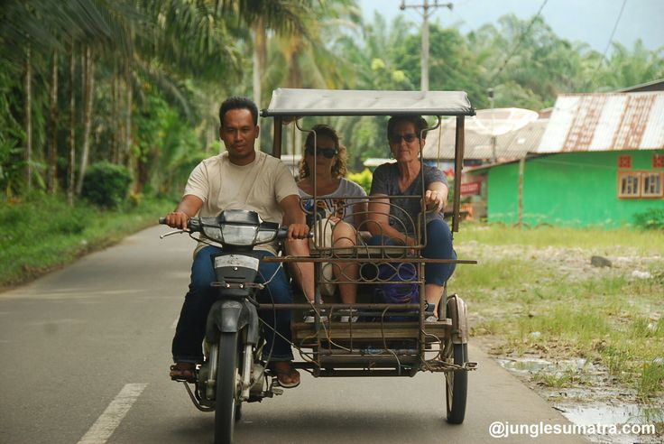Becak Or Tuk Tuk.. its special transport for village tour arounding Bukit Lawang Village, See bit closer how the local people harvesting padi, brown sugar and toffu local made. And Taste a young coconut.. Visit Local a primary School and hearing a local child always say HELLO ....