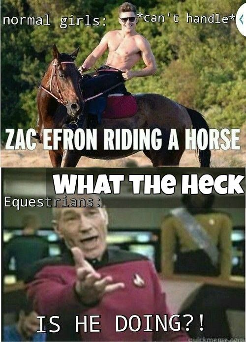 Poor horse...Finally! Someone edited it and took the curse word out! I've been wanting to pin this!