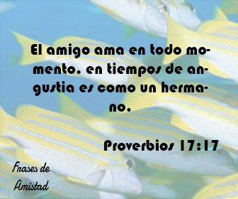 Frases de amistad biblicas de Proverbios 17:17