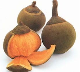 Zapote -  es de un color verde en la parte externa y de color naranja en la parte interna, cuando está maduro. Muy fibroso y de sabor dulce y extraño