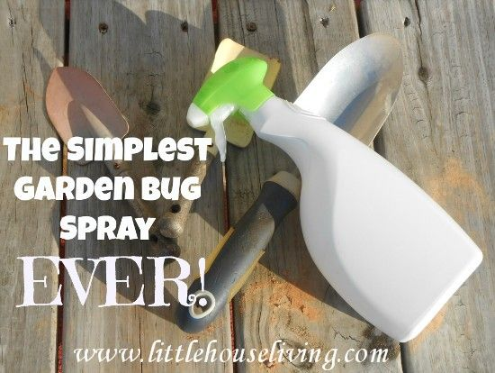 This is the easiest recipe for bug spray for your garden but it really works!