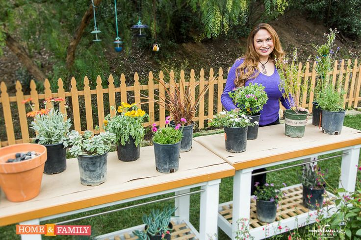 1000 images about hallmark home and family show on pinterest gardens family show and Home channel gardening