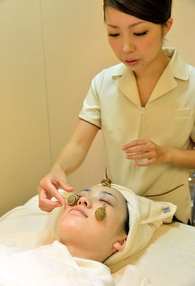 Jusqu'où seriez-vous prêts à aller au nom de la #beauté ? Au #Japon certains salons vous proposent le #soin du visage à base d'#escargots vivants. Ils auraient des propriétés anti-âge et #hydratantes …  Alors, êtes-vous tentés ? http://on.fb.me/1dZr4Dz