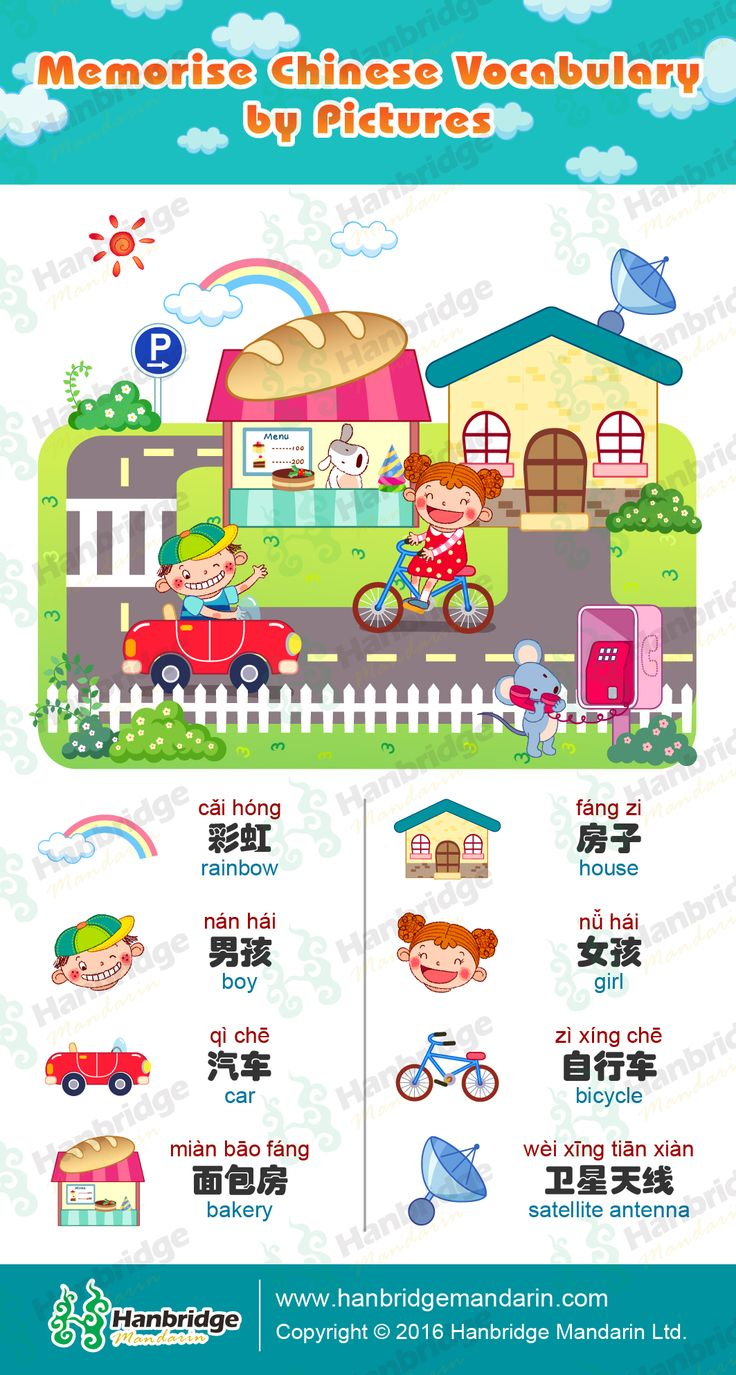 Kids' Chinese Study Card- Memorise Chinese vocabulary by pictures.
