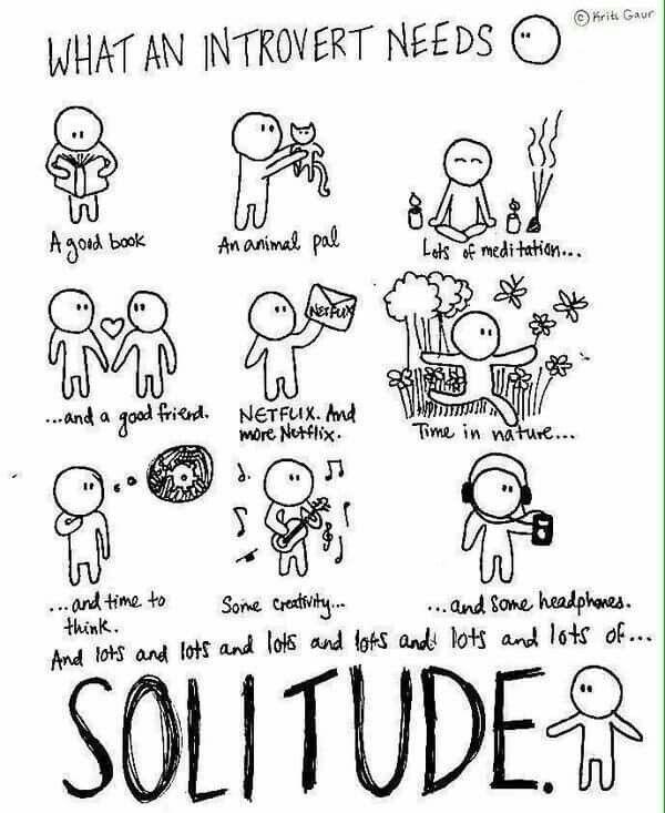 What an introvert needs.
