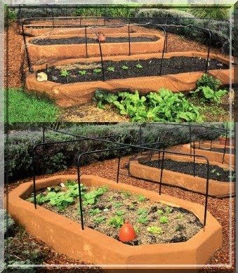 248 best garden raised beds images on Pinterest Raised bed