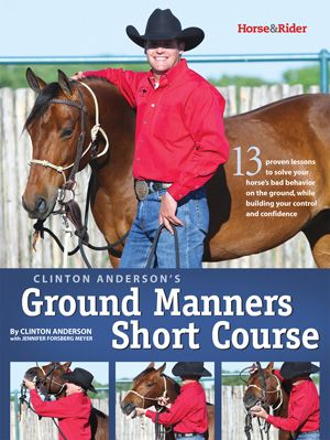 Clinton Anderson's 3 Great Horse Training Tips by Clinton Anderson