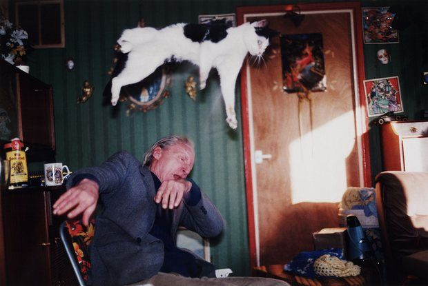 Richard Billingham's Untitled, 1995, from the Ray's a Laugh series.