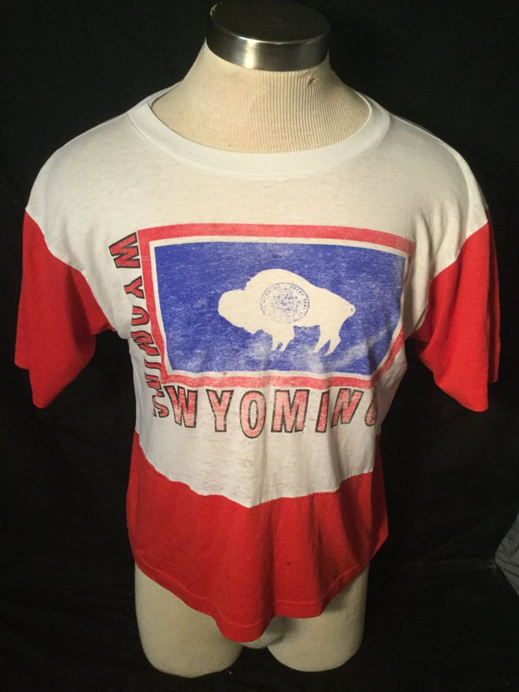 Vintage 1980's Tourist Wyoming Buffalo USA 50/50 Great Color Made in USA Thin and Soft by 413productions on Etsy