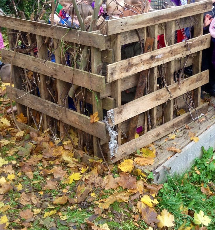 Recycled pallet creating a bird hide in environmental area.