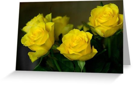 Yellow roses, symbol of friendship and joy by steppeland.  blank inside  Price: €1.96 - Check discounts!