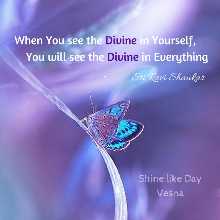 When YOᘮ see the Divine in YOᘮરself YOᘮ will see the #Divine in everything ︵‿‿ #Joy #Love #Blessings #Quotes #VesnaA