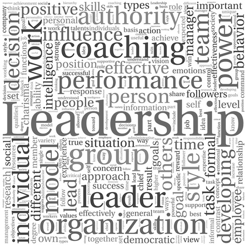 Leadership: As of late, organizational leadership comes in a variety of essential shapes and forms. These four leadership model perspectives are provided so that you may consider which leadership modeling approach best aligns with your organization's business definition, mission, and objectives: Participative, Teams, Change-Oriented Leadership, Charismatic Leadership Models, and Transformational Leadership Models. (Trinity Web Works)