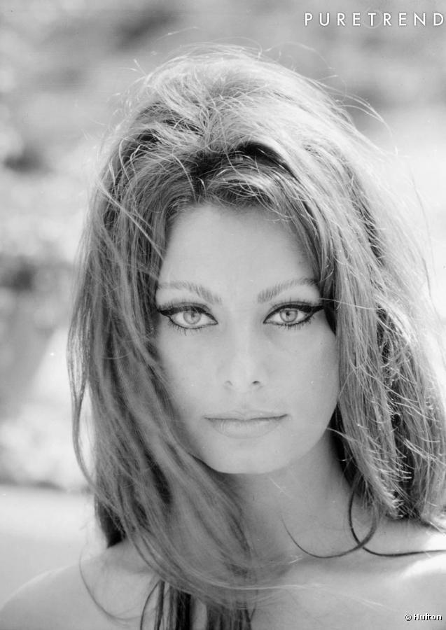 Sophia LaurenSophia Loren, Cat Eye, Sofia Loren, Beautiful Women, Sofialoren, Icons, Beautiful People, Hair, Sophialoren
