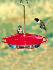 the best hummer feeder they actually perch relax and drink for several minutes so homemade hummingbird - Homemade Hummingbird Food
