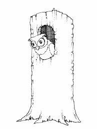 223 Best Hootie Owl Images On Pinterest