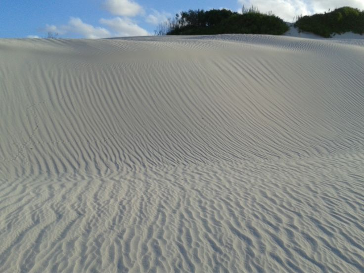 Sand is constantly on the move, leaving the beautiful patterns...  (some might refer to them as 'trippy)'