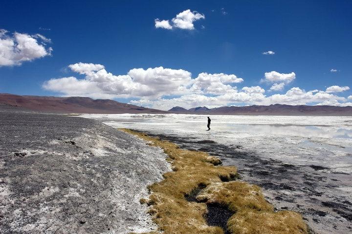 Salar de tara ,Desierto Atacama,Chile