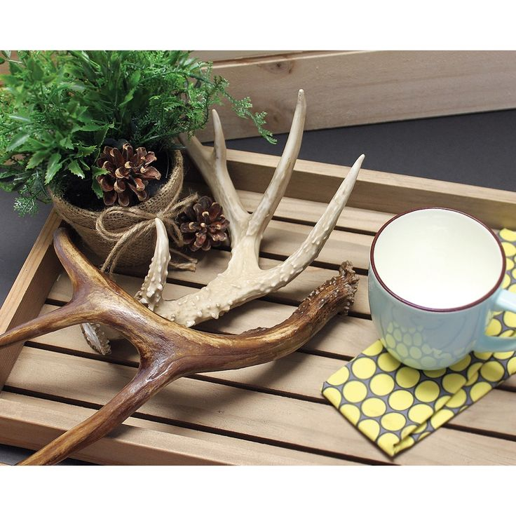 BCI Crafts Gathered Deer Antler 4 Point-Brown - brown