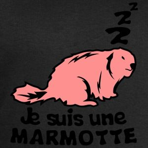 je suis une marmotte animal expression Tee shirts - Sweat-shirt Homme Stanley & Stella
