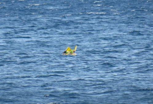 Rescatan a un bebé en una barca hinchable a un kilómetros de la costa.