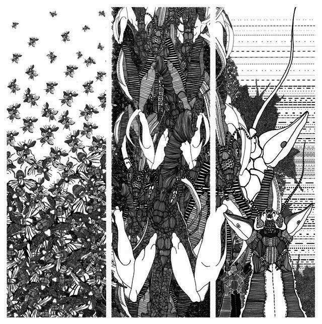 Patternd of 'Beetlebeat' interior textile collection by krisztiballa #surfacepatterndesign #krisztiballa #diplomawork #pattern #patterndesign #bw #insects