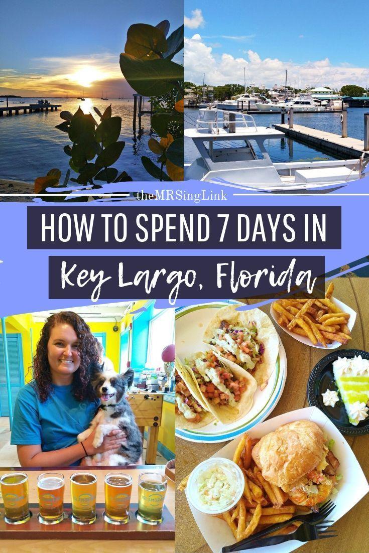 7 Days Of Summer Vacation In Key Largo Florida Keys Key Largo Florida Florida Keys Honeymoon Florida Keys