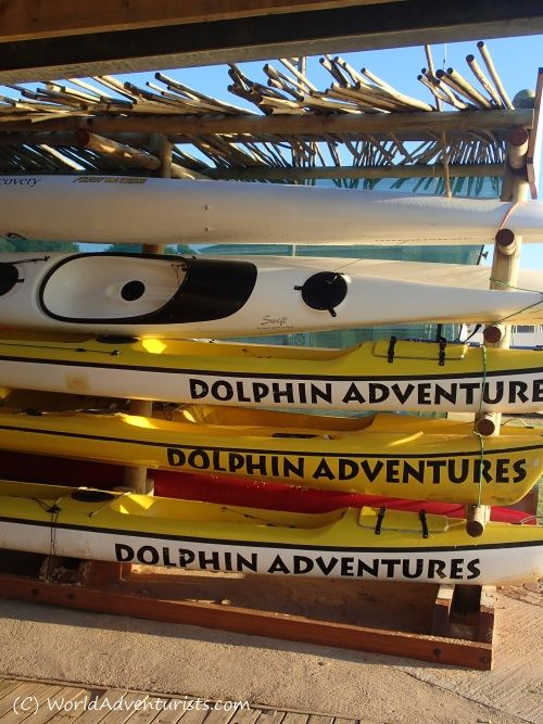 # Kayaking In #PlettenbergBay #South Africa