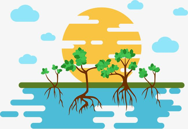 mangrove illustrator vector material vector graphics mangrove forest mangrove landscape png and vector with transparent background for free download illustration vector illustration illustration art mangrove illustrator vector material