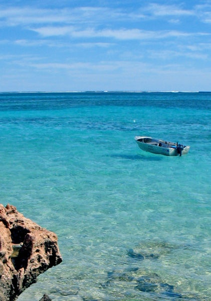 Exmouth Western Australia, here to swim with whale sharks
