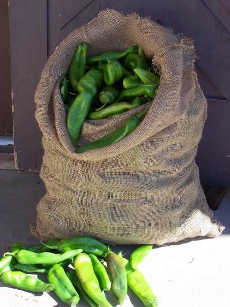 Fabulous Green Chile - This picture literally makes me hungry and happy at the same time!