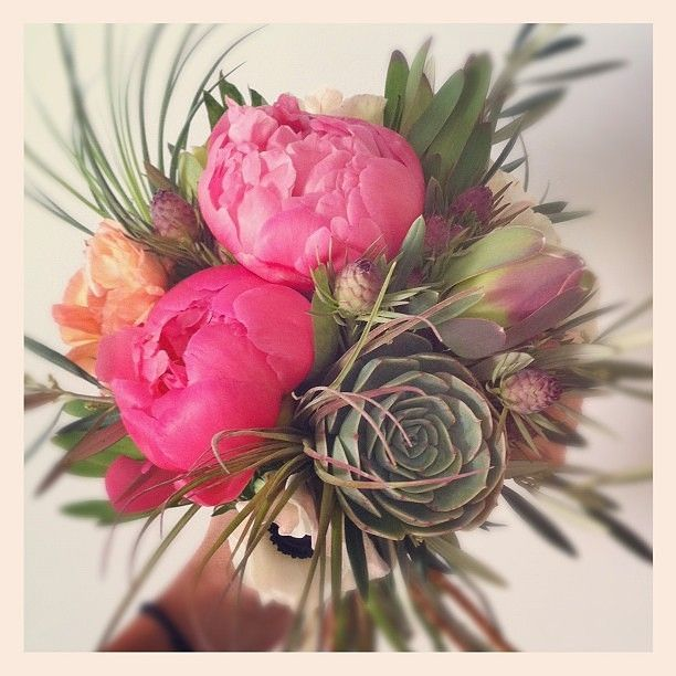all sorts of fun greens like olive, mint, thyme, succulents, airplants and leucadendron with white anemones, peach ranunculus and glorious coral peonies