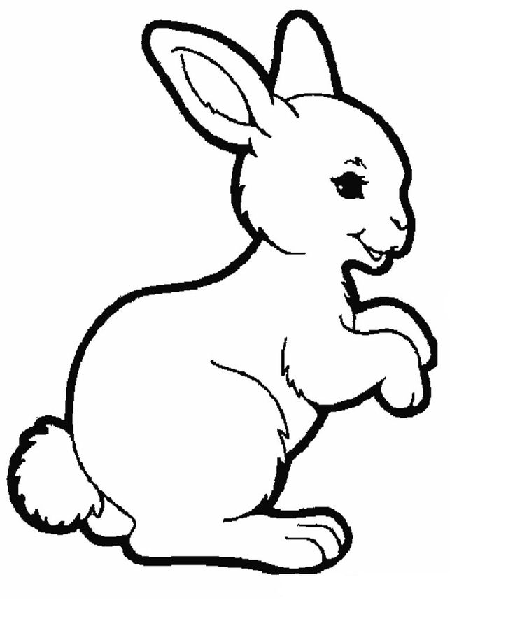 rabbit coloring pages animals rabbit coloring pages