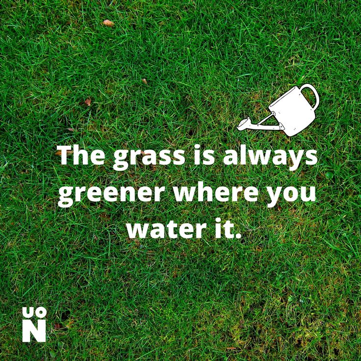 Nurture what you have and you may be surprised what comes of it. #Mondaymotivation #UoN #UniNorthants